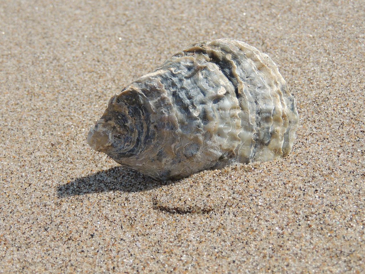 流動層の原理(まるで水のように振る舞う砂)