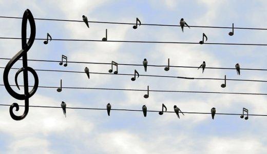 耳コピできない人が音階を採る方法~WaveToneの使い方~